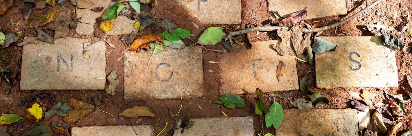 NGFS bricks